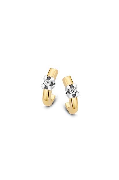 14 krt Briljant oorknoppen bicolor bezet met 2x 0.05 ct diamant - 709221010