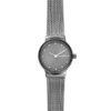 Skagen dames horloge - SKW2700